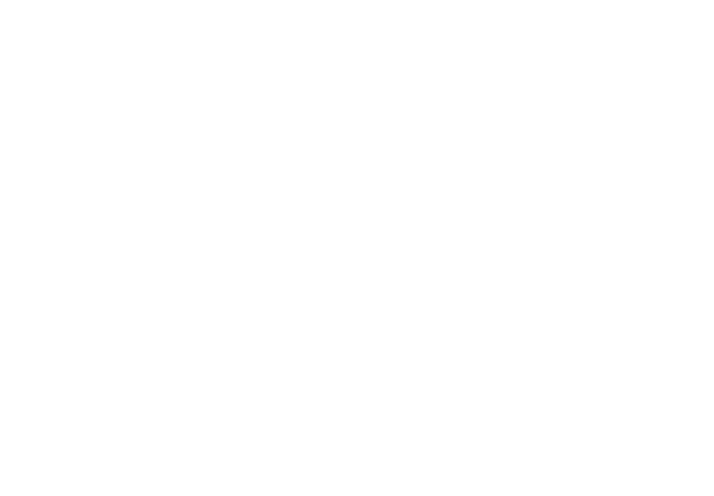 Magnis logo Michal Halačka Business & Marketing show